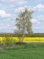 Spreewald/9397/vater-sohn-beziehung 'Vater-Sohn-Beziehung'