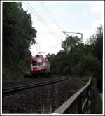 rh-1116/22935/1116-005-8-mit-einem-leeren-autozug 1116 005-8 mit einem Leeren Autozug in Regensburg Prüfening