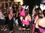 Allgemeinbilder/10759/und-auch-diese-hasentruppe-darf-auf und auch diese 'hasentruppe' darf auf der 'Meile' in san Antonio (Ibiza) nicht fehlen!!! aufgenommen Juni 2008